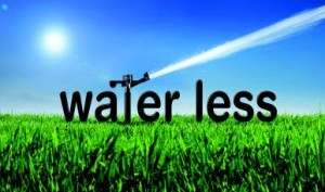 water-your-lawn-less